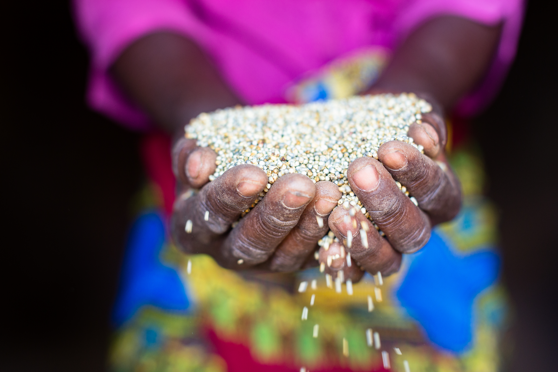 UN assessment report outlines development challenges, opportunities in Zimbabwe